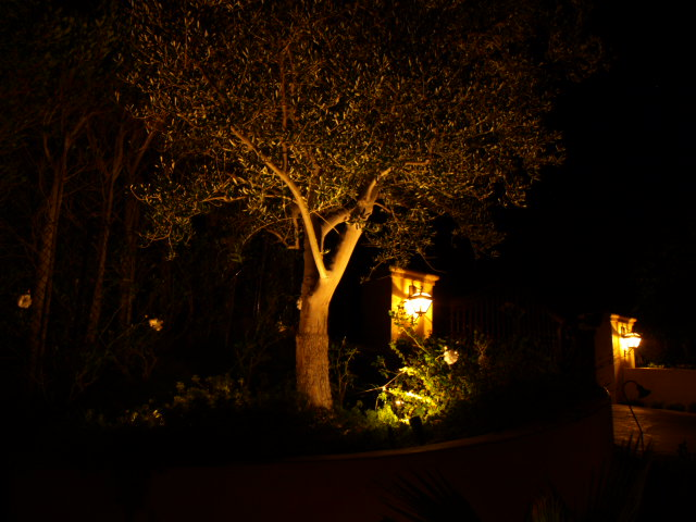 Dos Vientos Exterior Lighting